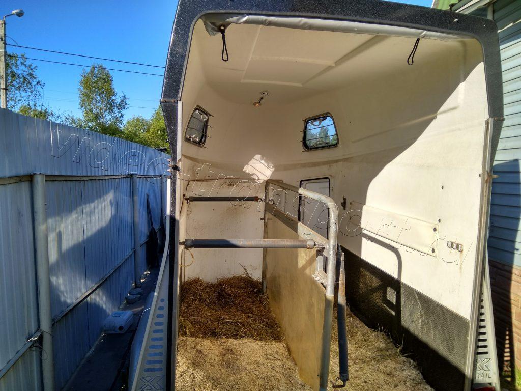 Система видеонаблюдения в коневозе